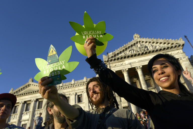 Легализация каннабиса в Уругвае. Как у них получилось?